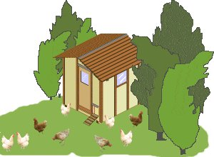 Chicken Coop Image