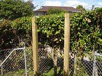 Gated arbor Posts