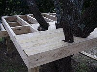 Treehouse Plan : Fix the Floorboards to the Tree House Floor