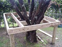 Treehouse Plan : Fit the Intermediate Joists to the Tree House Floor