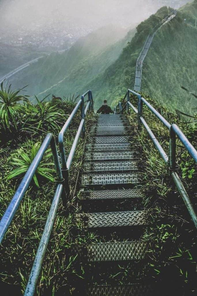 Tropical Stairs in Maui