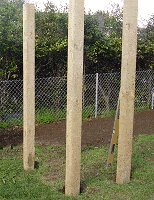 Peaked Top Arbor : Stand the Arbor Posts