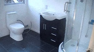 Bathroom Do-Over : Fit Toilet and Vanity