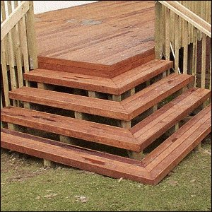 Deck with Handrail and Steps : Steps