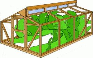 Greenhouse 500