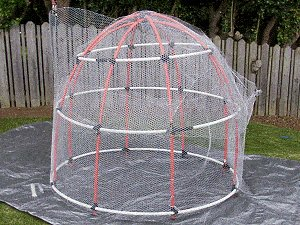 Elf Cave : Complete the Netting