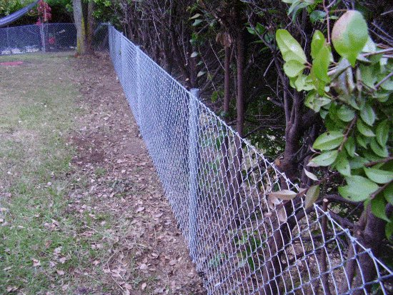 Pipe and Chain-Link Mesh Fence : Finished Fence