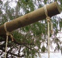 Rope Swing : Beam Rope