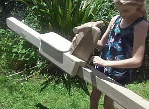 Seesaw with Sliding Seats : Picture